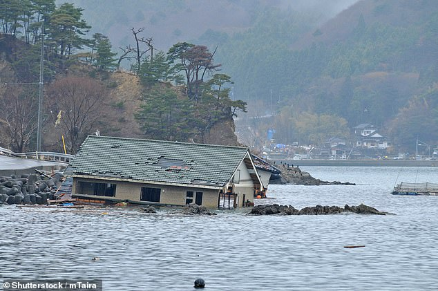 Using health and survey data on people living in areas worst hit by the 2011 tsunami in Japan (pictured) gave experts at Harvard University in Cambridge, Massachusetts an insight into the link between cognitive decline and natural disasters .