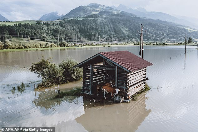 Researchers say floods in Europe this year (like the one pictured in Kaproon, Austria in July), which killed more than 200 people and caused billions of dollars in damage, are now nine times more likely to be caused by climate change.