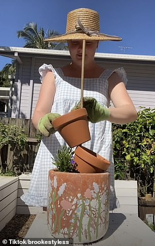 , REVEALED: How to create a stunning stacked pot plant garden at home in minutes, Nzuchi Times National News