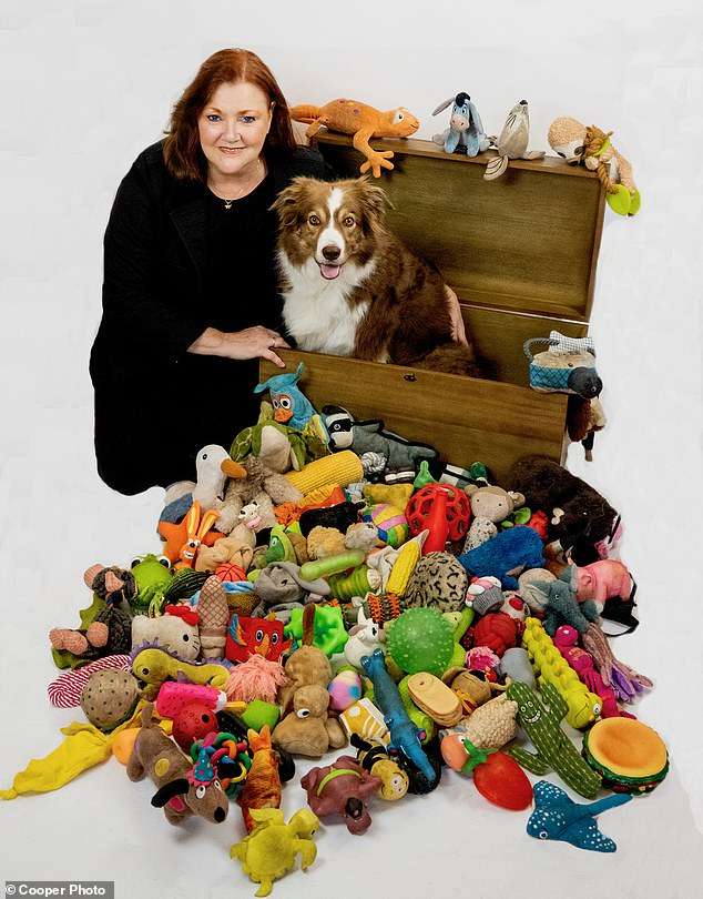 Nalani is seen with her toys and owner Sonja.  When the Border Collie demonstrated excellent memory skills, in packs of clever dogs, it was little surprise to scientists