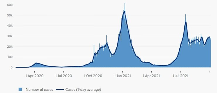 ENGLAND CASES: The number of people testing positive for Covid in England has levelled off over the past fortnight, after breaching 50,000 a day in July. Rates were highest in January, when the Alpha variant took off