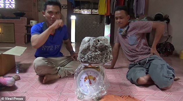 Asaree Pooad abandoned his fishing trip with his father due to monsoon rains in the Satun province in March this year. Both were downhearted when they returned to shore empty-handed but found two large chunks of whale vomit. Pictured: One sample of ambergris weighed 7kg