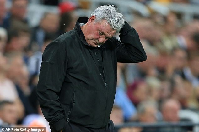 Steve Bruce has admitted he fears he will lose his job once the new Newcastle owners are in