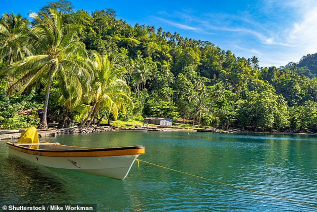 , Castaways survive 29 DAYS adrift in the Pacific by eating floating coconuts and drinking rainwater, The Today News USA