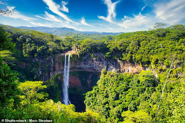 Pictured is theChamarel Waterfall -waterfall visits and rainforest hikes are just some of the activities holidaymakers can experience in Mauritius