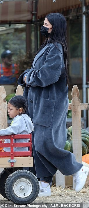 Out and about: The 24-year-old billionaire hid her growing baby bump underneath a long duster for the outdoor adventure with Stormi and her cousin True in tow