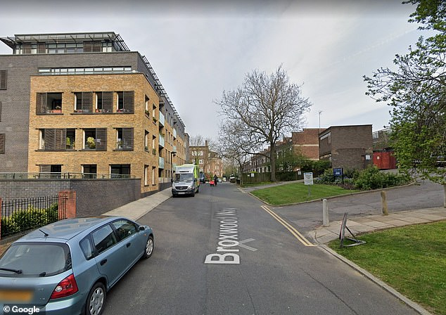 Officers attended the flat and found a woman, aged in her 30s, suffering stab injuries. The road is pictured above