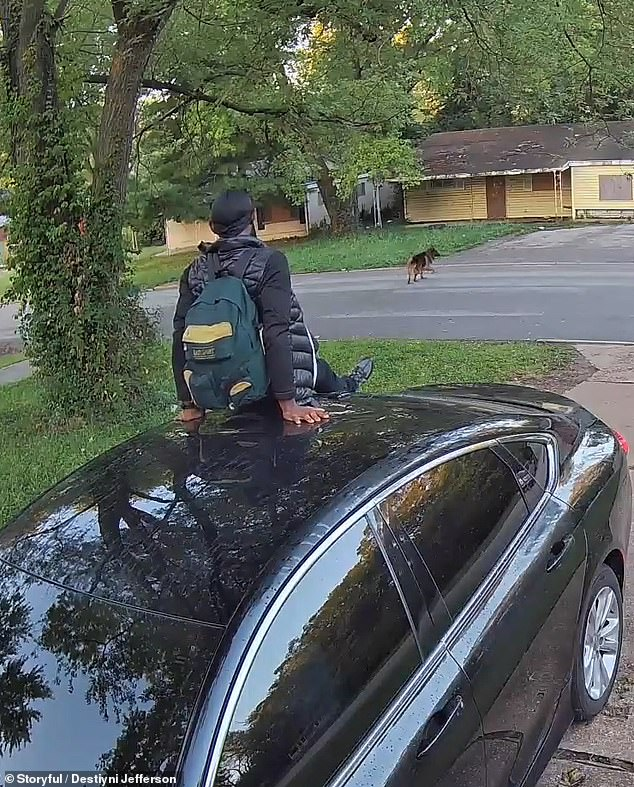 Destyni Jefferson, who sits in her car, honks the horn to ward the dog off and it scampers away across the street as the man cautiously watches it