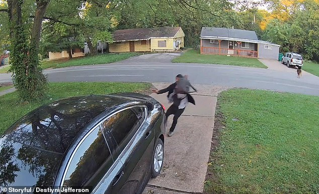 The man sprints away from the dog when it starts to bark and chase him in St Louis, Missouri