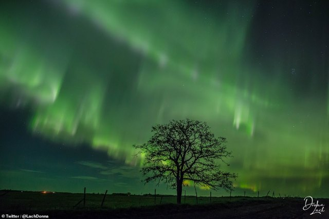 The ripples that Aureura believes are similar to a veil of light and reflect the lines of force in the Earth's geographic field with which the solar particles travel.  Photo: Northern Lights as seen in the sky over Palmas County in Manitoba, Canada last night.