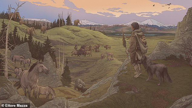 The first domesticated dogs arrived in North America about 15,000 years ago, but they did so with human owners who trekked across the Bering Strait from Asia (Stock).