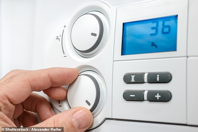 Smart heating controls can help you benefit from a smart or time-of-use energy tariff that uses affordable, low-carbon electricity when it's available