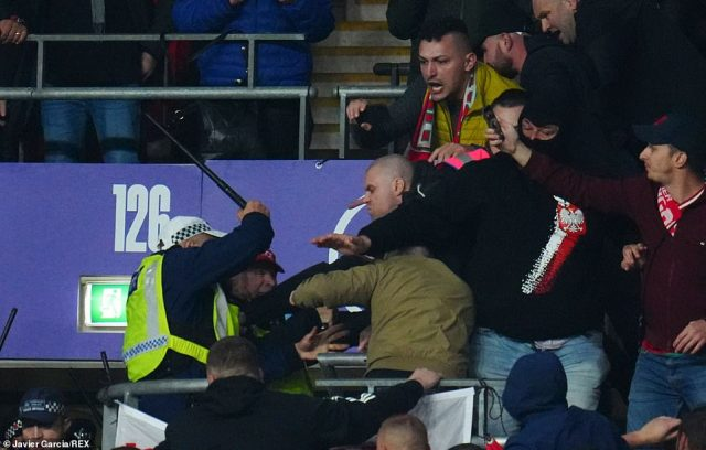 Some Hungarian fans could be seen throwing punches at police officers, who hit out with batons