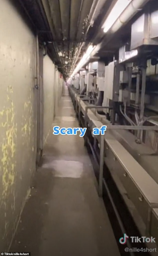 Creepy: She opens a door at the bottom, which leads to an industrial room with machinery.Along the side is a long, narrow hallway with a dark dray floor and dark gray walls