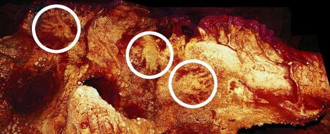 Another Maltravieso Cave showing three hand stencils (circled). One has been dated to at least 66,000 years ago and must have been made by a Neanderthal. The enhanced colour of the photo shows the outline of the hands. The research team believe that the stencils indicate a distinct attempt at art
