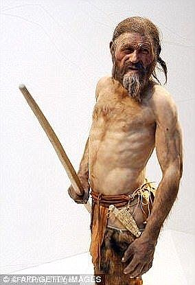 Since his discovery on 19 December 1991 by German hikers, Ötzi (artist's impression) has provided window into early human history.