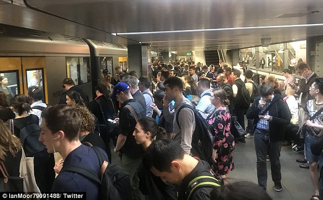 Busy: Pictures from central station showed commuters several rows deep waiting for trains