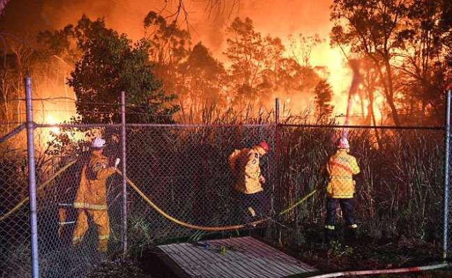 Sydney Bushfires Passengers Watch As Flames Burn Around