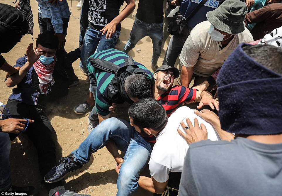 A protester screams in agony as he is picked up by fellow Palestinians during deadly clashes along the Gaza border today. The death toll continued to climb this morning as anger mounted over the US embassy opening in Jerusalem