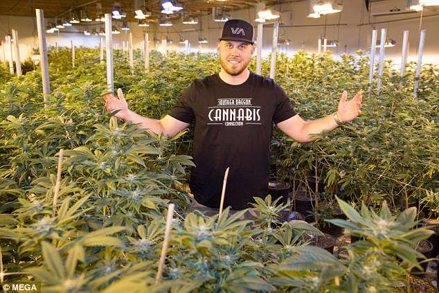 Tracey's son Tyler is developing a strain of cannabis called 'Markle's Sparkle' in the US state of Oregon, known for its relaxed drug laws