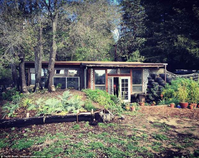 A young couple built a 560sqft 'earthship' home using reclaimed and re-purposed materials with wooden walls reinforced by car tires for just $10,000