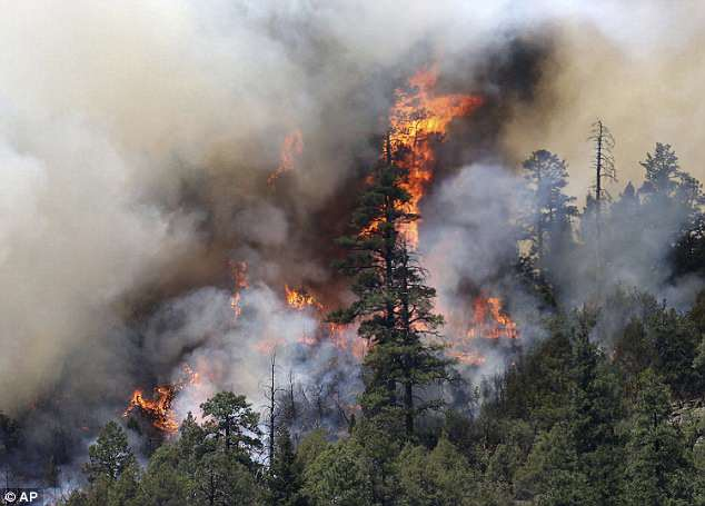 The photo above shows the wildfire burning on the east side of the Hermosa Cliffs near Hermosa, Colorado