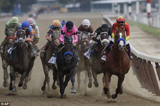 Restoring Hope (in pink) still hangs off Justify (in red) at the end of the backstretch with Bravazo pinned inside and other challengers forced to run extremely wide