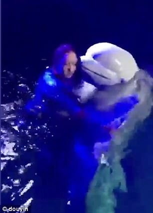 The trainer has been accused of using the whale to get popular on social media