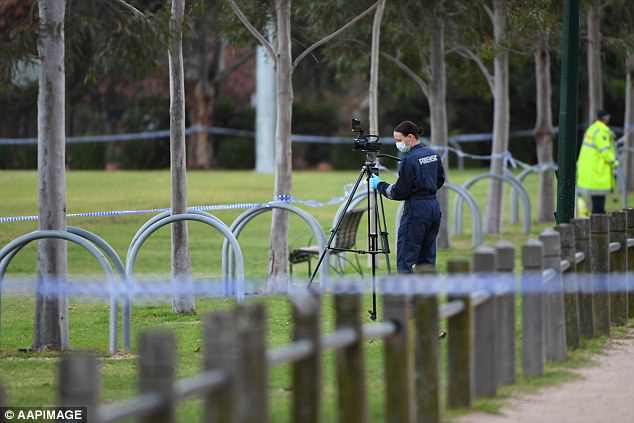 The body of a woman in her 30s has been found on a soccer pitch in the middle of a popular park (pictured is the scene)
