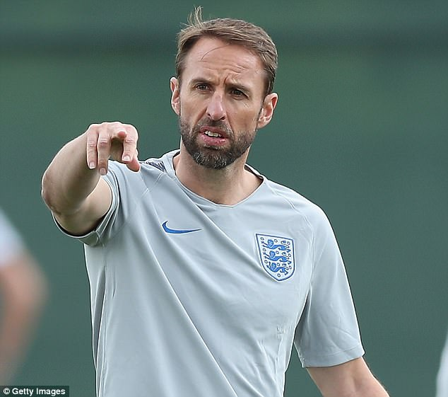 Ferdinand is not shocked that his former team-mate Gareth Southgate is in management