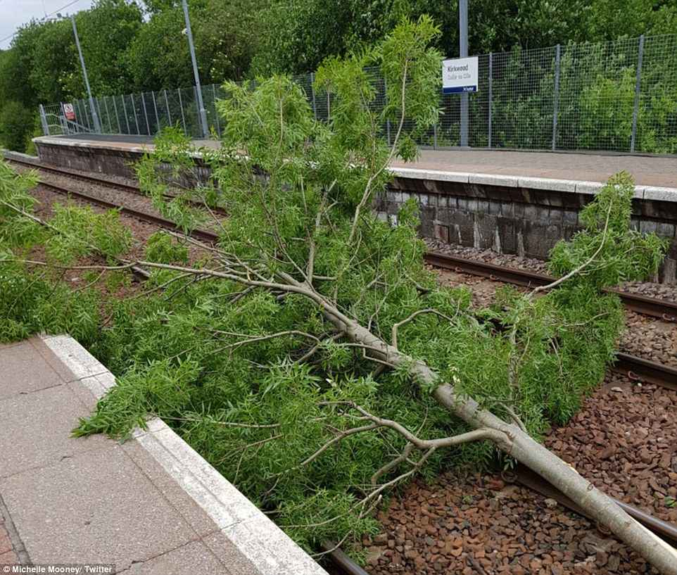 A tree has fallen onto the tracks at Kirkwood railway station in Scotland this morning, blocking the train line east of Glasgow