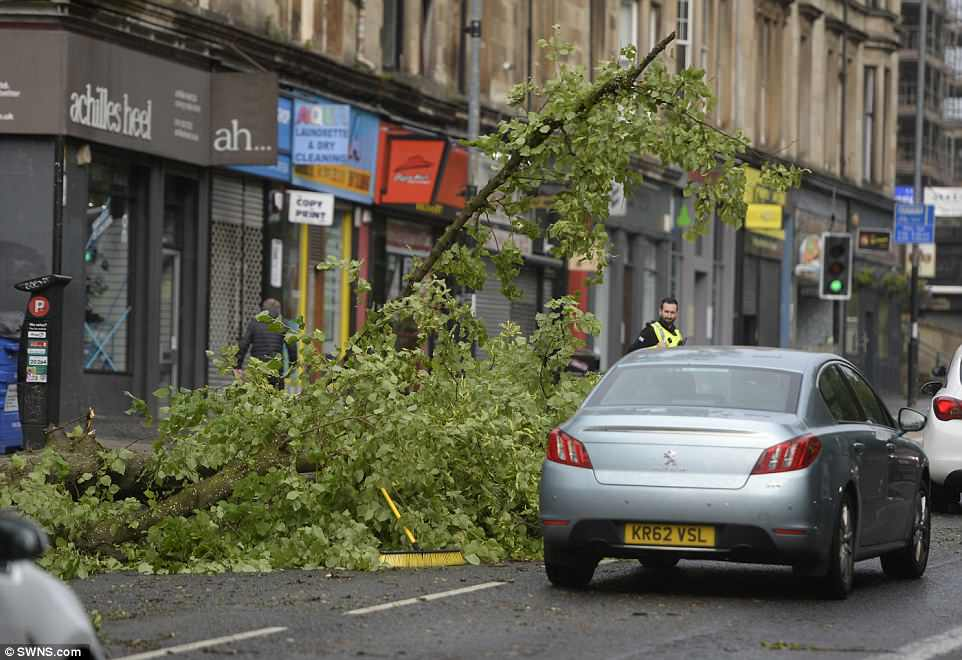Police officers in Glasgow deal with a fallen tree on the road this morning as Storm Hector sweeps across Scotland