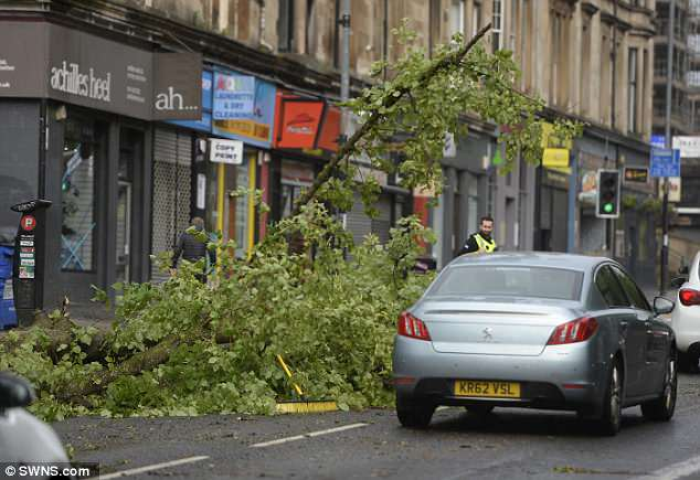 Affected areas: Police officers in Glasgow deal with a fallen tree on the road this morning as Storm Hector sweeps across Scotland