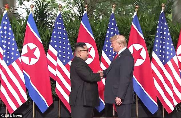 Ri Chun-hee, Kim's favourite news broadcaster, narrated the footage - describing the moment the dictator met Trump as 'the meeting of the century'
