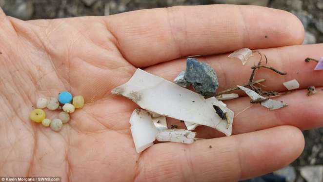 The team found plastics on beaches at every site they surveyed, including some that must have travelled long distances.Flora Rendell-Bhatti, a researcher from the University of Exeter, said: 'As plastic pollution breaks down it is harder to identify the sources of the fragments and fibres by eye'
