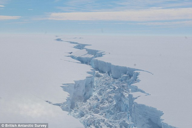 The collapse of two threatened Antarctic ice shelves would raise global sea levels by an inch, warns new research. Recent warming in the Antarctic Peninsula is a threat to ice shelves in the region, with Larsen C and George VI at the highest risk of collapse. Pictured is a rift in Larsen C