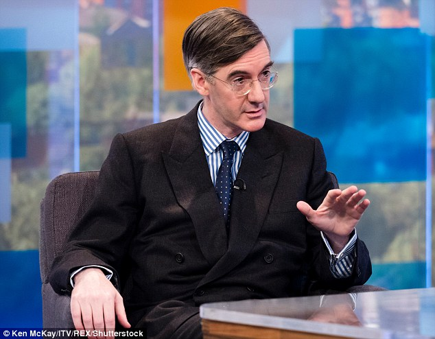 Stake:Jacob Rees-Mogg owns a fifth of SCM