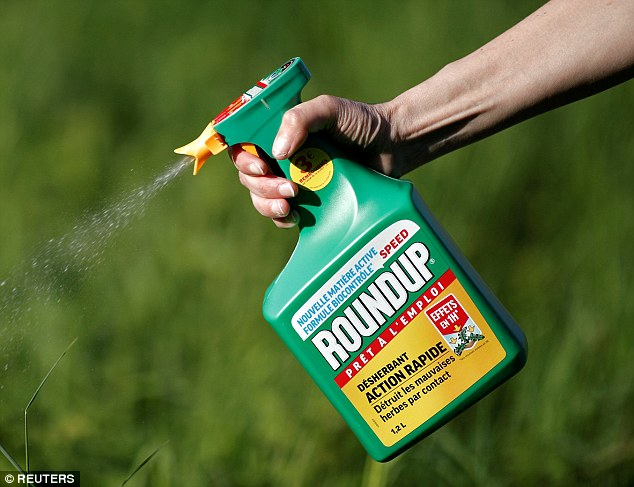 Monsanto has denied any link with the disease, saying the product has undergone stringent testing and more than 800 studies have established its safety