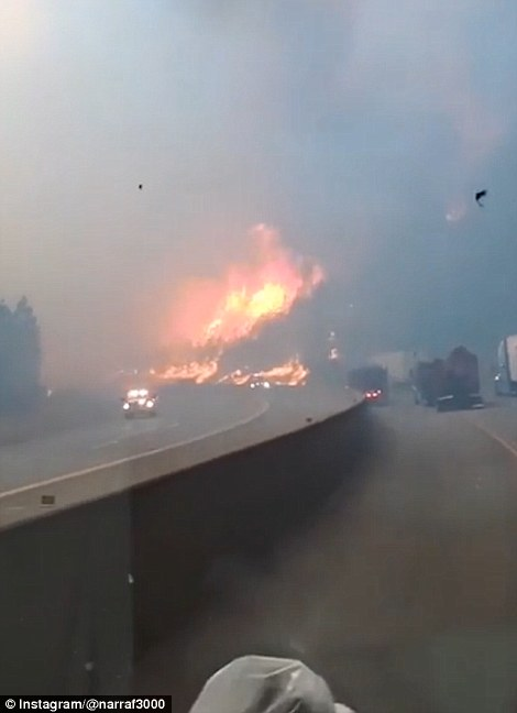 In the video, a woman is heard begging her boyfriend to get out of their vehicle and leave as the fire raged closer to them