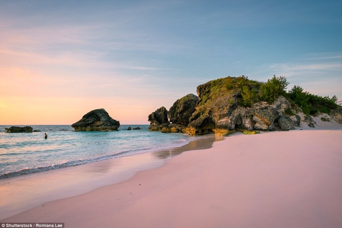 Pink sand: A selfie-lover's paradise, Horseshoe Bay Beach has been ranked as one of the best in the world