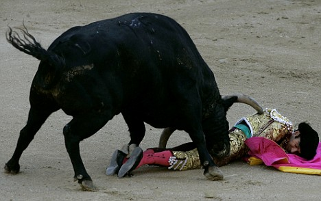 Off Road Wallpaper Hd Pictured Superstar Matador Gets Gored By Two Angry Bulls