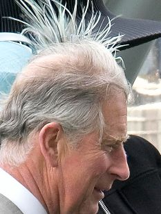 Bad Hair Day Charles Does His Impression Of A Royal