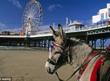 Seaside towns top poll for Britons favourite staycation ...