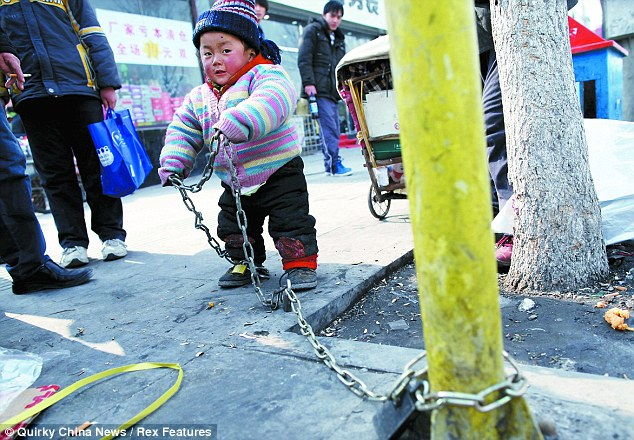 Chained: Two-year-old Chen Chuanliu is regularly padlocked to a tree while his rickshaw driver father touts for customers in Beijing