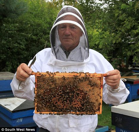 Beekeeper Ron Hoskins from Swindon who has breed a strain of bees  which can protect themselves from the deadly parasitic varroa mite