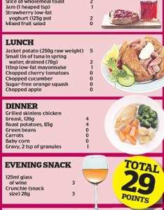 Enlarge what you can eat also weight watchers pro points plan  new approach to dieting success rh dailymail