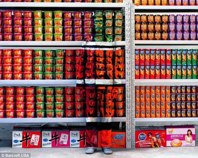 Weekly shop: Bolin in a supermarket (yes he's definitely there!)