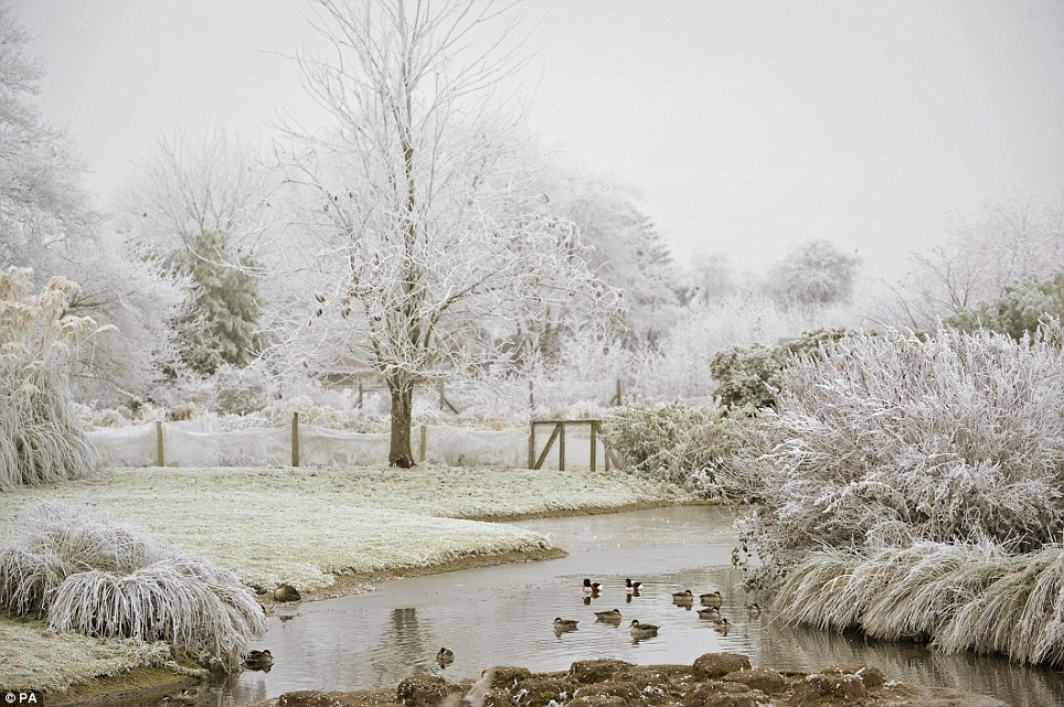 UK Weather Frost Makes Much Of Countryside Look Like A