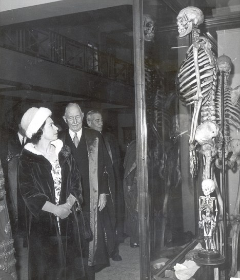 One feels very small: The Queen observes the skeleton of the 'Irish Giant' in 1962