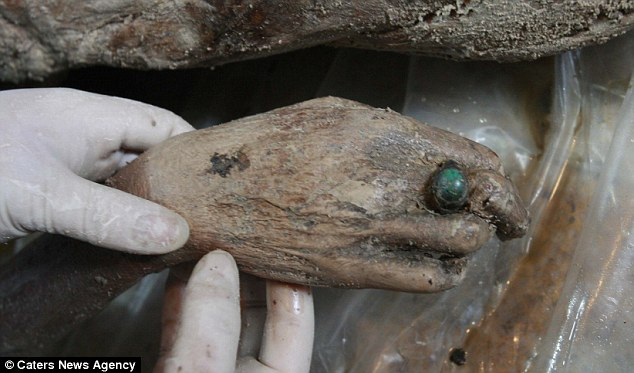 Bejewelled: The right hand of the 700-year-old mummy shows her preserved skin, and a ring adorns her finger